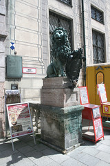 Rechter Löwe - Münchner Residenz