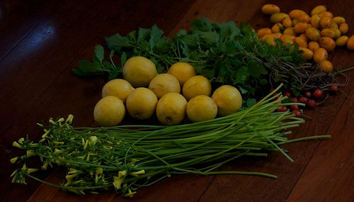 Wood sorrel, lemons, rose hips, nettles, kumquats.