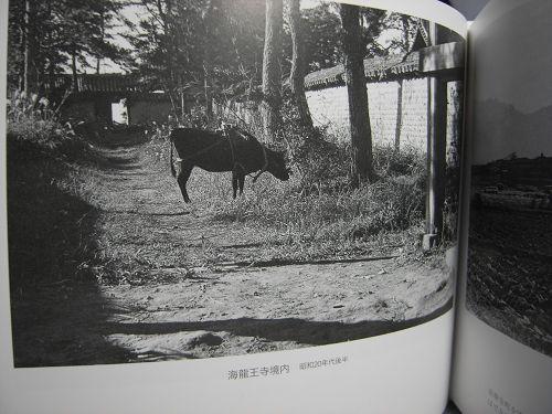書評『昭和の奈良大和路 入江泰吉の原風景』-09