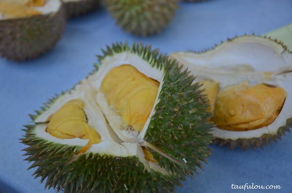 durian part 2 (13)