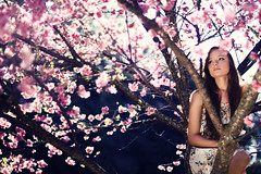 Sakura no Uta (AnnuskA  - AnnA Theodora) Tags: light portrait tree girl beautiful face lady hair colorful long dress gorgeous curly brazilian sakura cherryblossoms reallycutemakeuptoo