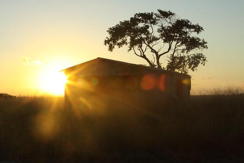 7:15 AM Small Town Texas Road Sunrise