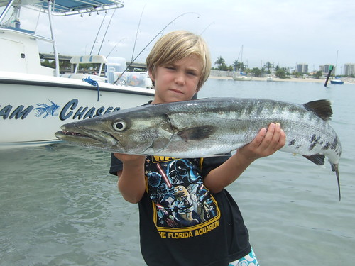 matthew and barracuda