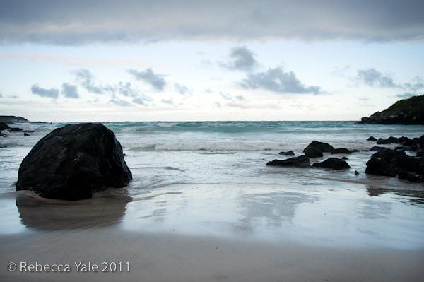 RYALE_Galapagos-267