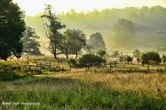 Misty Morning (Robert Myer) Tags: morning trees light sunlight mist field grass fog sunrise fence pennsylvania farm earlymorning hills pasture northwestpennsylvania