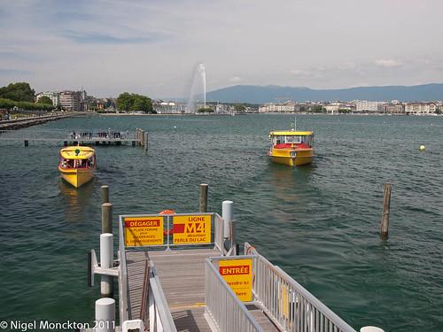 Mouettes, Geneva