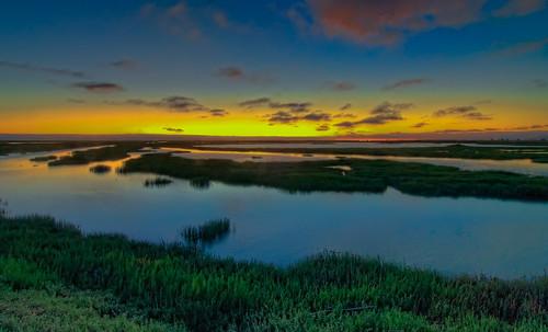 Hayward Shoreline Wetlands