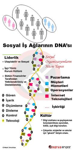 Sosyal İş Ağlarının DNA'sı
