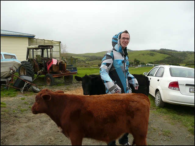 Moritz with the cows ^^