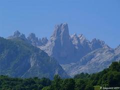 Picu Urriellu (Picos de Europa) (izaguepa) Tags: espaa naturaleza nature spain asturias olympus pico monte montaa picu picosdeeuropa asturies naranjo bulnes naranjodebulnes picuurriellu