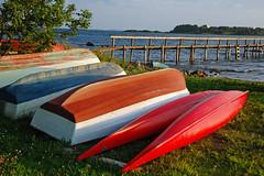 Evening (Linepusle) Tags: summer norway larkollen