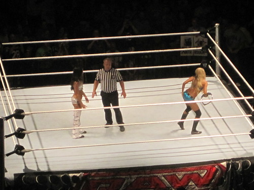 Kelly Kelly vs. Brie Bella