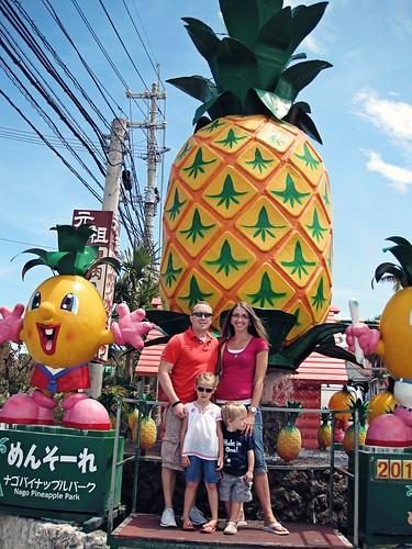 Nago Pineapple Park 1