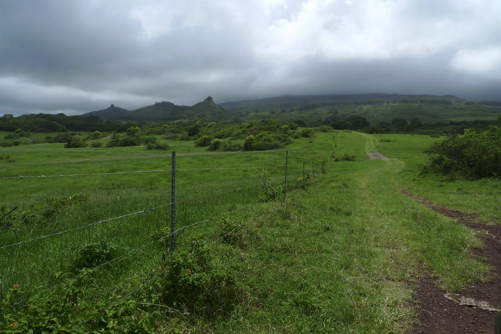 Hawaii318