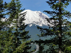Rainier peaks out on Crystal Peak trail.