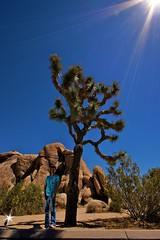 Joshua Tree (Peter Fuchs) Tags: california park portrait usa holiday tree angle joshua sony flash wide sigma national wireless f22 alpha 55 1020mm ultrawide 1100 strobist
