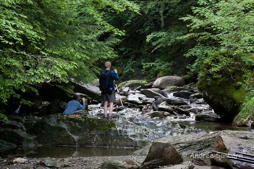 Moss Glen Brook, Stowe, VT-20.jpg