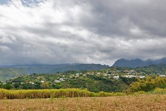 La Reunion - 1-500 s  f - 9,0 (ZX-6R) Tags: travel vacation france forest montagne landscapes village place country foret environnement reunionisland entredeux christophefaugere wwwchristophefaugerecom httpwwwchristophefaugerecom