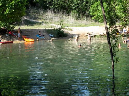Swimming at Barton Springs