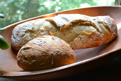 Artisan Bread in Five Minutes a Day by ellajohn