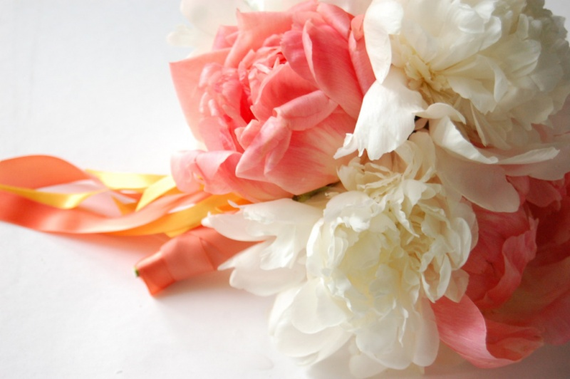 close-up-peony-bouquet-white-coral-ribbon
