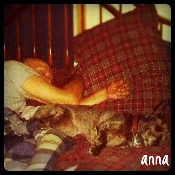 Anna, Quiet