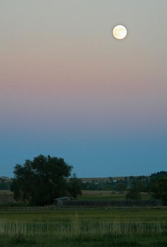 Photo - Harvest Moon Cherryvale