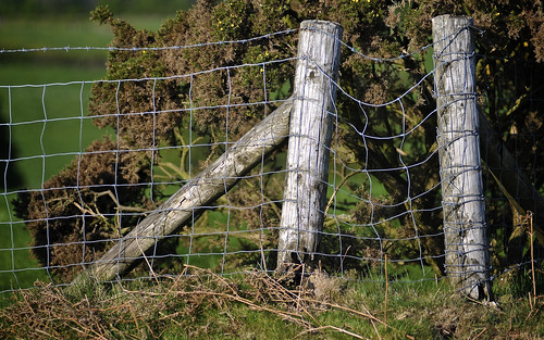 Wire Fence In The Brecon Beacons