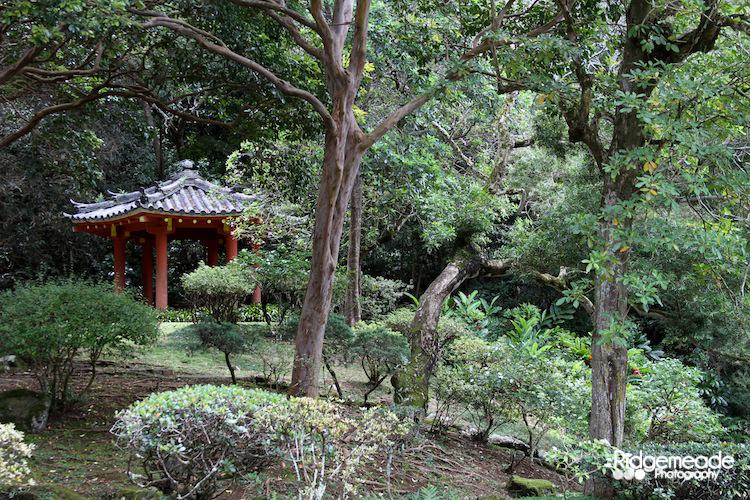 Byodo-In Temple 3