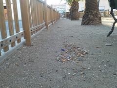 Amposta: Parc infantil Prolongació Av. Catalunya