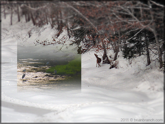 P1140283_cocagne_river_winter_summer