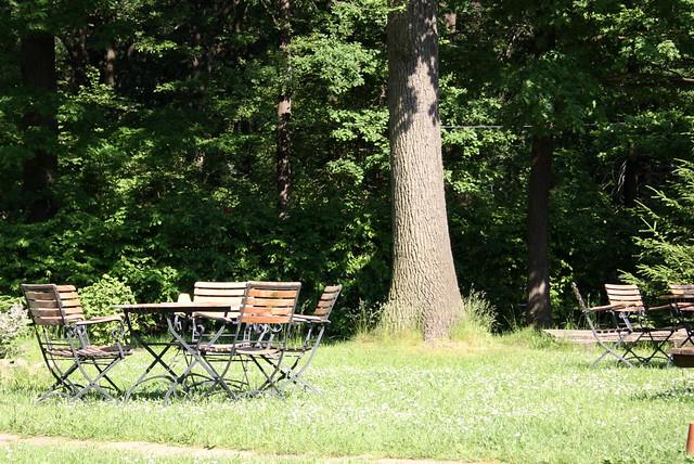 Café CaRe Garden