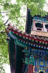 _DSC7741 (durr-architect) Tags: china school court temple peace buddhist beijing buddhism prince palace monastery harmony lama tibetan han dynasty emperor qing kangxi yonghegong lamasery monasteries yongzheng eunuchs