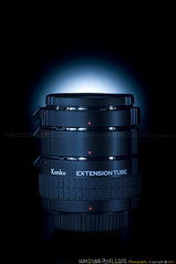 97/365 Kenko Auto Extension Tube Set DG - Nikon (Humayunn Niaz Ahmed Peerzaada) Tags: india project season photography m