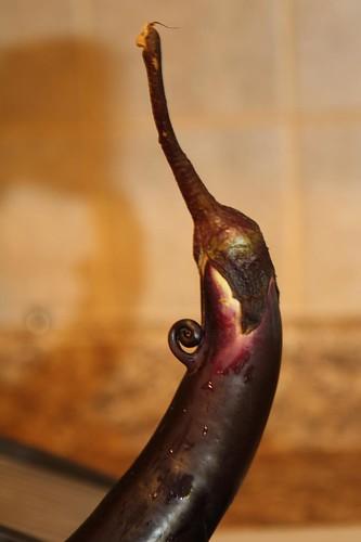 Funny Eggplant
