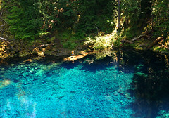 i want to dive in (Xuan Che) Tags: travel blue summer portrait lake green water pool oregon forest river landscape volcano lava rainforest hiking turquoise july clear cascades pacificnorthwest mckenzie willamette rosemania 2011 tamolitch