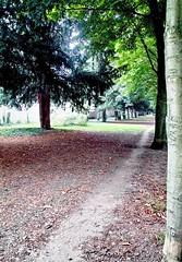 jardin de la ppinire (alainalele) Tags: france internet creative sigma commons nancy bienvenue lorraine licence presse dp1 bloggeur paternit