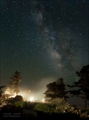 Garden and Milky Way (Lucas Janin | www.lucasjanin.com) Tags: california longexposure blue light sky usa plant color tree green fog night plante iso3200 star nikon outdoor lumire bigsur vert f45 explore ciel 24mm nikkor insomnia nuit arbre brouillard couleur lightroom milkyway longueexposition insomnie voielacte lightroom3 nikond700 lucasjanin afsnikkor2470mmf28ged 600sec