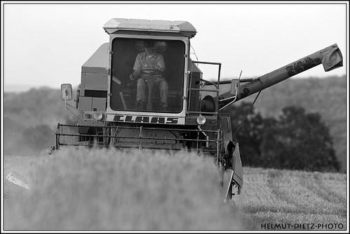Claas combined harvester, Bielefeld