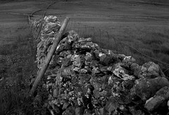 yorkshire dales - after paul hill (sean crawford) Tags: blackandwhite bw landscape countryside flickr yorkshire pastoral drystonewalls yorkshiredales infocus uplands northernengland highquality seancrawford elementsorganizer paulhillproject