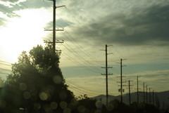 Drip, Drip, Drop (Bleedclarity) Tags: morning sunshine bokeh sparkle raindrops telephonepoles sooc