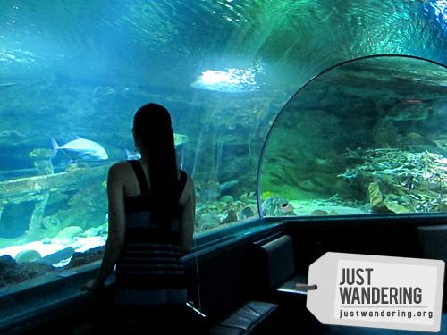 Underwater World Guam