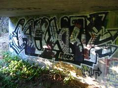 Kevin Harris (You can call me Sir.) Tags: california graffiti bay kevin north sonoma petaluma harris 170 northbay ppr