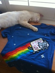 Nyan Cat with Mikey