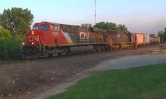 Shame (Wide Cab) Tags: cn train ic freight goldenhour canadiannational manifest illinoiscentral oshkoshwi a447 neenahsub