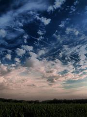 Feldrand III (O.I.S.) Tags: blue sky green field clouds landscape corn contrail feld himmel wolken mais grn blau landschaft dri hdr kondensstreifen fz50 tonemapping