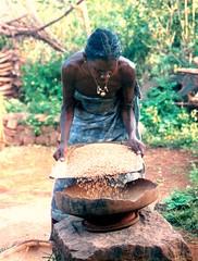 Seeds to grind (bokage) Tags: woman india tribal hills area tamil tamilnadu adivasi kolli malayaligounders