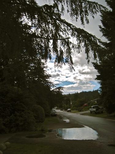 Rainy Scene Seen, Sechelt BC