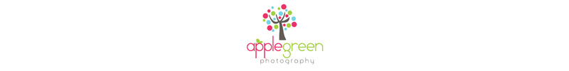 applegreenslide2