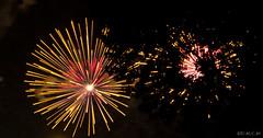 Feu d'artifice : Fte nationale (D.M.C.M ) Tags: paris france tree europe rivedroite fireworks arbre iledefrance hanabi  feudartifice  furansu      canon60d dmcm fgu  peulangseu yroppa yoroppa